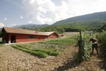Vista della fattoria