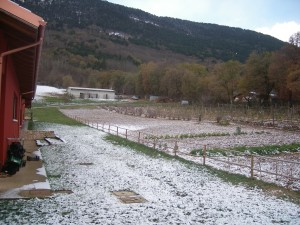 Orto innevato in Agriturismo Fattoria Antica Forconia a L'Aquila
