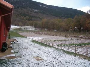 Orto e paesaggio della Fattoria Antica Forconia in inverno