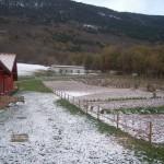 Monti e Orto in Agriturismo Fattoria Antica Forconia