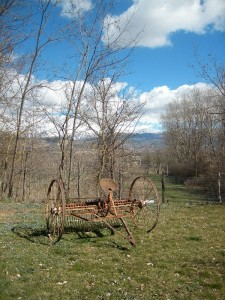 Pezzi di storia in Agriturismo Fattoria Antica Forconia a L'Aquila