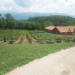 vista dell'Agriturismo Fattoria Antica Forconia a L'Aquila
