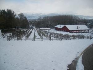 Vista d'Inverno dell'Agriturismo a L'Aquila Fattoria Antica Forconia